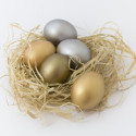 Financial Security: How to Protect a Nest Egg