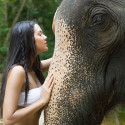 Financial Change: The Rider and the Elephant